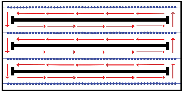 Diagram showing lane discipline during lap swim session